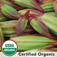 Hill Country Red Okra Organic Seeds - Seeds Savers Exchange | Amish Country Store in Branson, Missouri