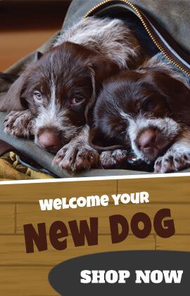 hero-banner-puppycenter.jpg