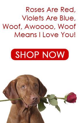 hero-hearts-and-love-dog-collars.jpg