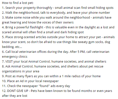 how to find a lost pet