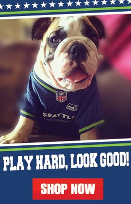 NFL Dog Collars, Tags, Jerseys, & More