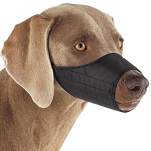 Nylon Dog Muzzle - Lined For Comfort