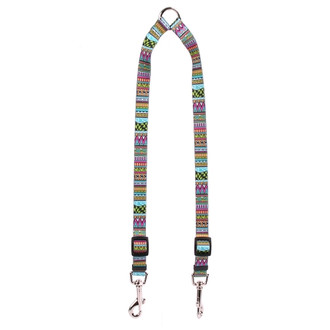 Festival Stripe Coupler Dog Leash