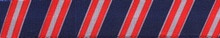 Team Spirit Navy, Red and Gray Coupler Dog Leash