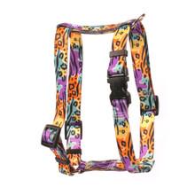 """Safari Roman Style """"H"""" Dog Harness"""