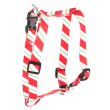 "Peppermint Stick Roman Style ""H"" Dog Harness"