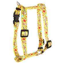 "Happy Birthday Roman Style ""H"" Dog Harness"