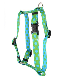 "Green and Blue Polka Dot Roman Style ""H"" Dog Harness"