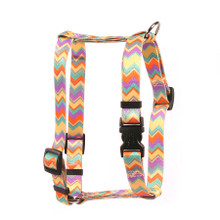 "Chevy Stripe Multi Roman Style ""H"" Dog Harness"