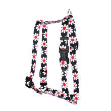 "Black Daisy Roman Style ""H"" Dog Harness"