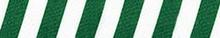 Team Spirit Green and White EZ-Grip Dog Leash