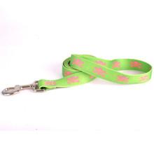 Green and Pink Skulls Dog Leash