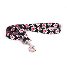Black Daisy Dog Leash