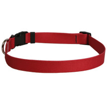 Solid Red Dog Collar