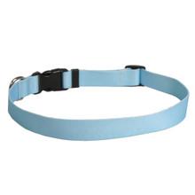 Solid Light Blue Dog Collar