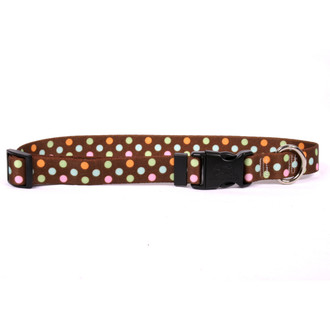 Neopolitan Dog Collar