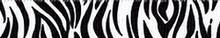 Zebra Black Waist Walker