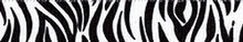 Zebra Black Groomer Loop