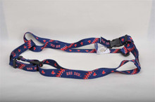 Boston Red Sox Dog Harness