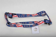 Washington Nationals Dog Harness