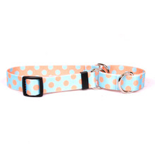 Blue and Melon Polka Dot Martingale Dog Collar