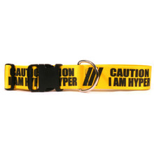 2 Inch - Caution I Am Hyper Dog Collar