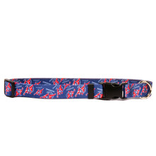 Washington Wizards Dog Collar