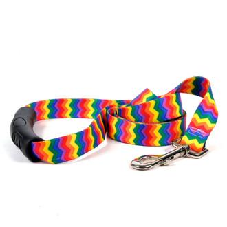 Rainbow Chevron EZ-Grip Dog Leash