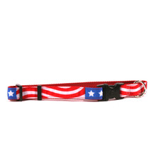 Americana on Red Grosgrain Ribbon Collar