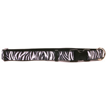 Black Zebra on Black Grosgrain Ribbon Collar