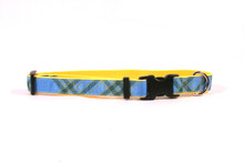 Blue Kilt on Yellow Grosgrain Ribbon Collar