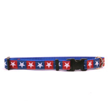 Colonial Stars on Royal Blue Grosgrain Ribbon Collar