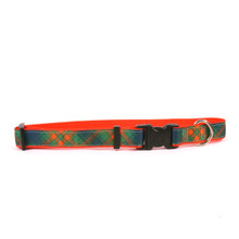 Green Kilt on Orange Grosgrain Ribbon Collar