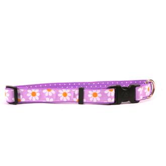 Lavender Daisy on Purple Polka Grosgrain Ribbon Collar