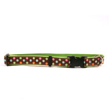 Neopolitan on Spring Green Grosgrain Ribbon Collar