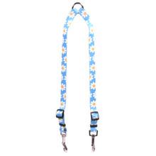 Blue Daisy Coupler Dog Leash