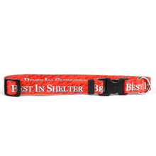Best In Shelter Dog Collar