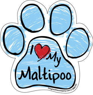 I Love My Maltipoo BLUE Scribble Paw Magnet