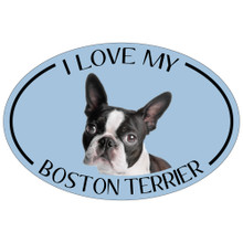 I Love My Boston Terrier Colorful Oval Magnet