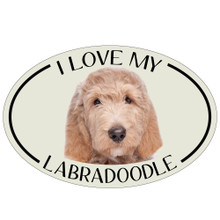 I Love My Labradoodle Colorful Oval Magnet
