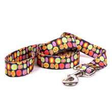 Bright Fun Dog Leash
