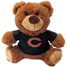 Chicago Bears NFL Teddy Bear Toy