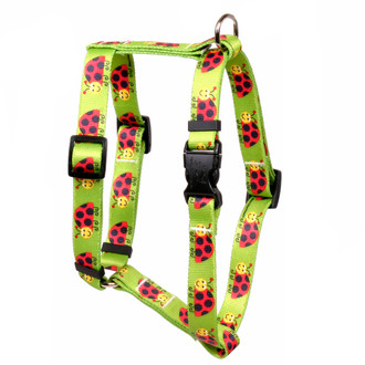 Lovely Ladybugs Roman Style Dog Harness