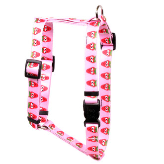 Sweet Strawberries Roman Style Dog Harness