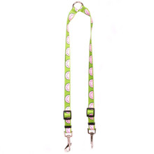 Wonderful Watermelons Coupler Dog Leash