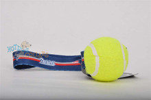 New England Patriots Tennis Ball Tug Dog Toy