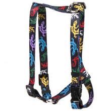 Geckos Black Roman Style H Dog Harness