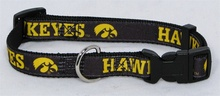 U of Iowa PREMIUM Dog Collar