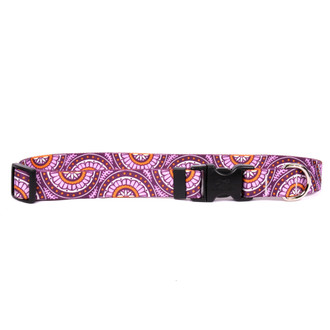 Radiance Purple Break Away Cat Collar