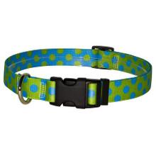 Green and Blue Polka Dot Break Away Cat Collar